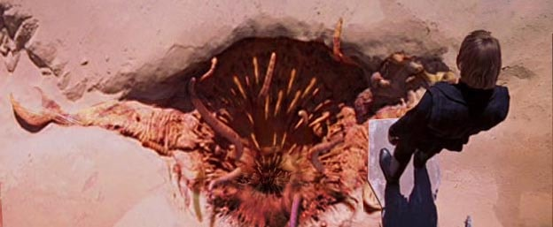 Mouth of the Sarlacc